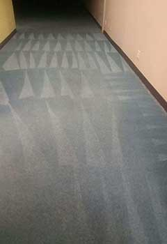 Local Carpet Cleaning Concord